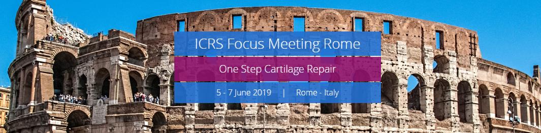 Bildergebnis für icrs rome 2019